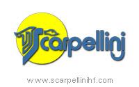 ARMERIA - SCARPELLINI