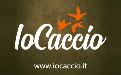 PARTNER - IO CACCIO