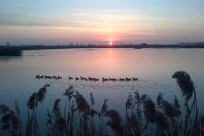 un'ultimo giorno di caccia,lago ghiacciato,non praticabile,ma non potevo perdermi l'ultima alba della stagione 2012/2013, nel meraviglioso chiaro di Claudio L. a Sant'Agata Bolognese