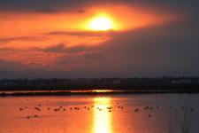 tramonto cervia volpoche